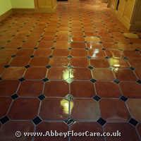 Terracotta Cleaning Portlethen
