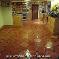 Terracotta Cleaning Houghton Regis