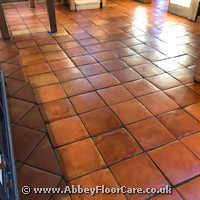 Terracotta Cleaning Wymondham