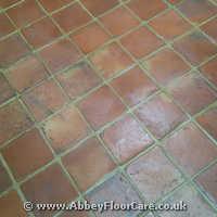 Terracotta Cleaning Jarrow