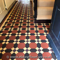 Victorian Minton Tiles Cleaning Havant