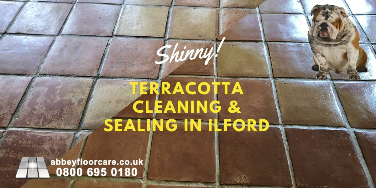Lovely Terracotta Floor In Ilford