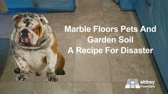 pets and soil can ruin your marble floor