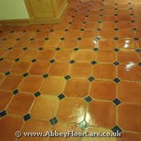 Terracotta Cleaning Burton on Trent
