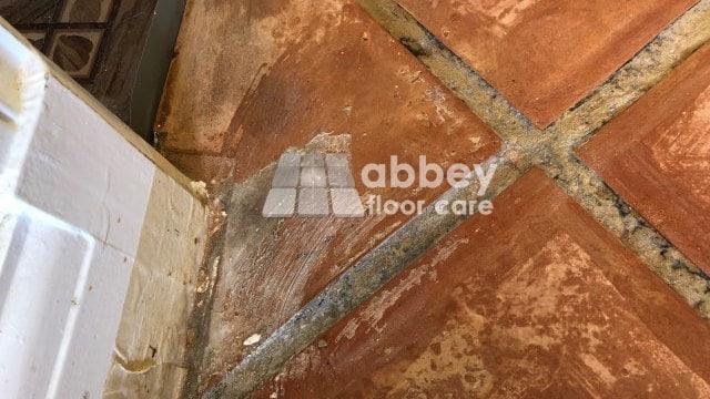 Terracotta Restoration Ilford London Abbey Floor Care