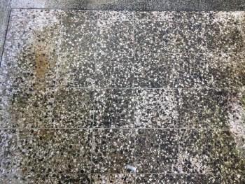 terrazzo floor polishing kinver stourbridge dy4 before picture