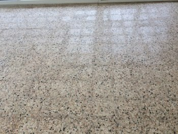 terrazzo polishing kinver abbey floor care indoor before